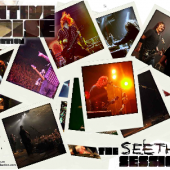 Get a free Seether Screensaver from The Native Noise Collection