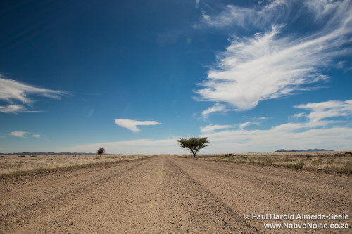 Road Tripping Through Namibia