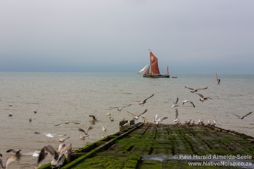 Day trip to Whitstable and surrounding areas. 20 September 2014.